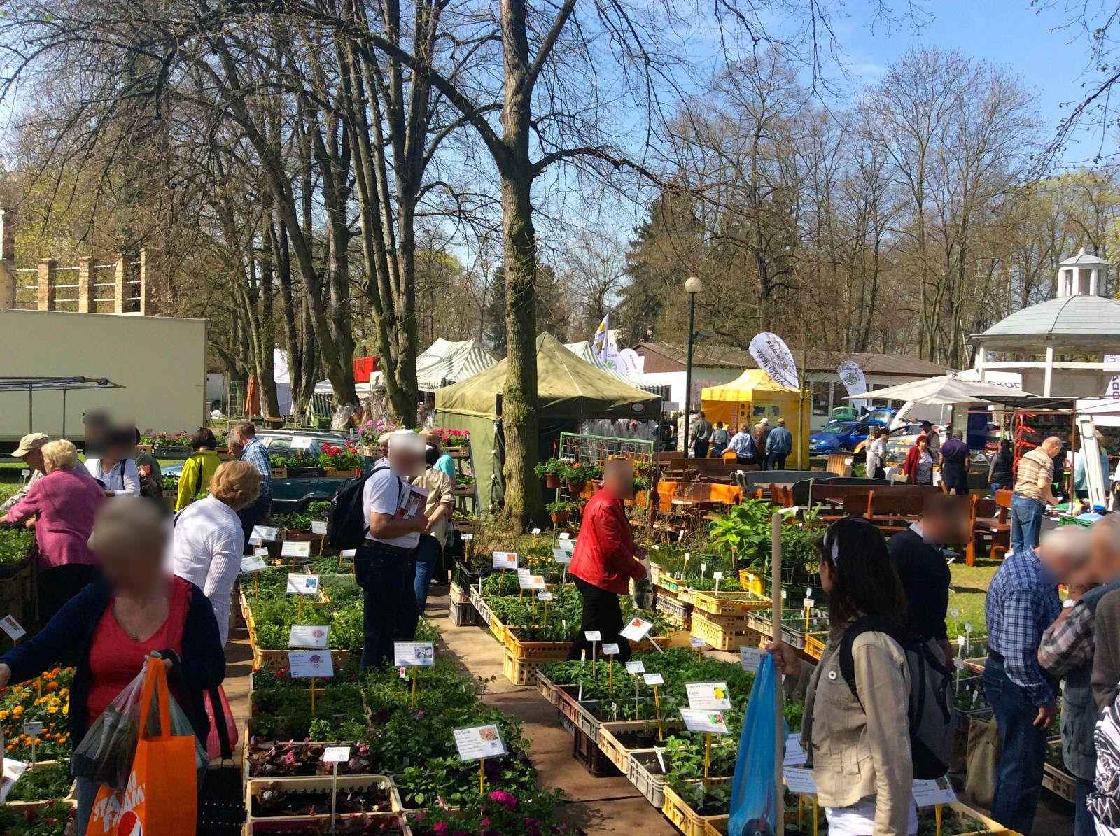 Výstava Dům a zahrada 2015, Louny